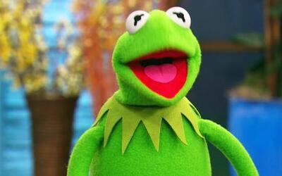 La Rana Kermit fue muy feliz en su visita a Despierta América