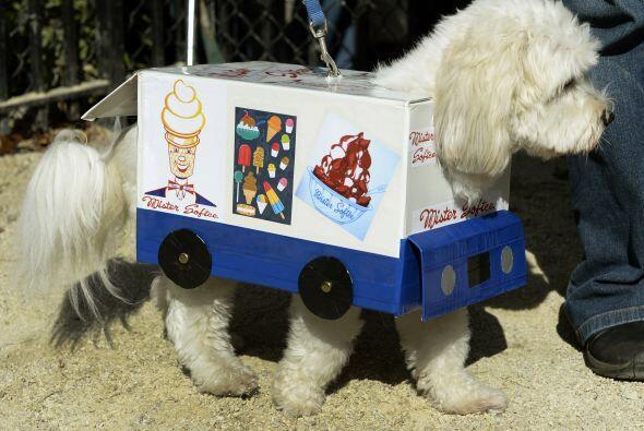 Si a tu mascota le encanta el helado, también puede ser un carrit...