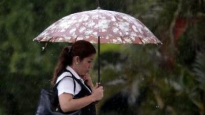 Denuncian que en México, las mujeres son víctimas del crimen organizado...