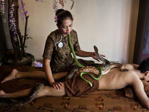 Un cliente en Yakarta recibe un masaje donde se usan pitones en el un sp...