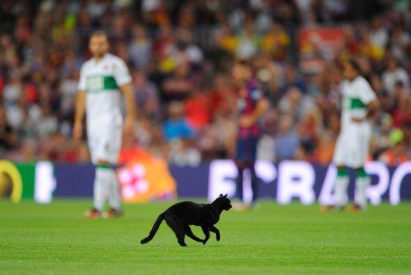 Al final, el pequeño fue sacado por un trabajador del estadio Camp Nou,...