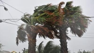 La tormenta tropical se formó frente a las costas del Pacífico mexicano....