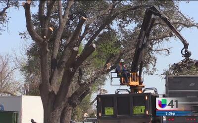 Implementan operativos de ayuda para personas afectadas por el tornado