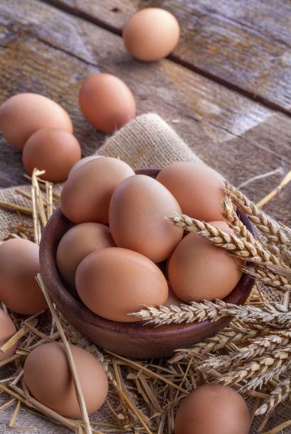 •El hígado de res, el queso y las yemas de huevo, proporcionan p...
