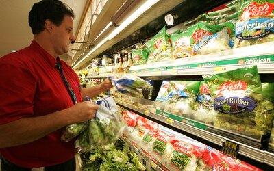 salud ecoli bacteria ensalada