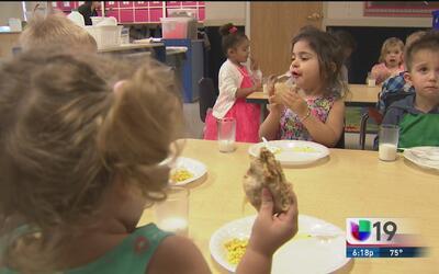 La alimentación es uno de los pilares de la salud de los niños