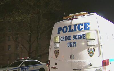 Investigan la muerte de una mujer que fue hallada con disparo en la espa...