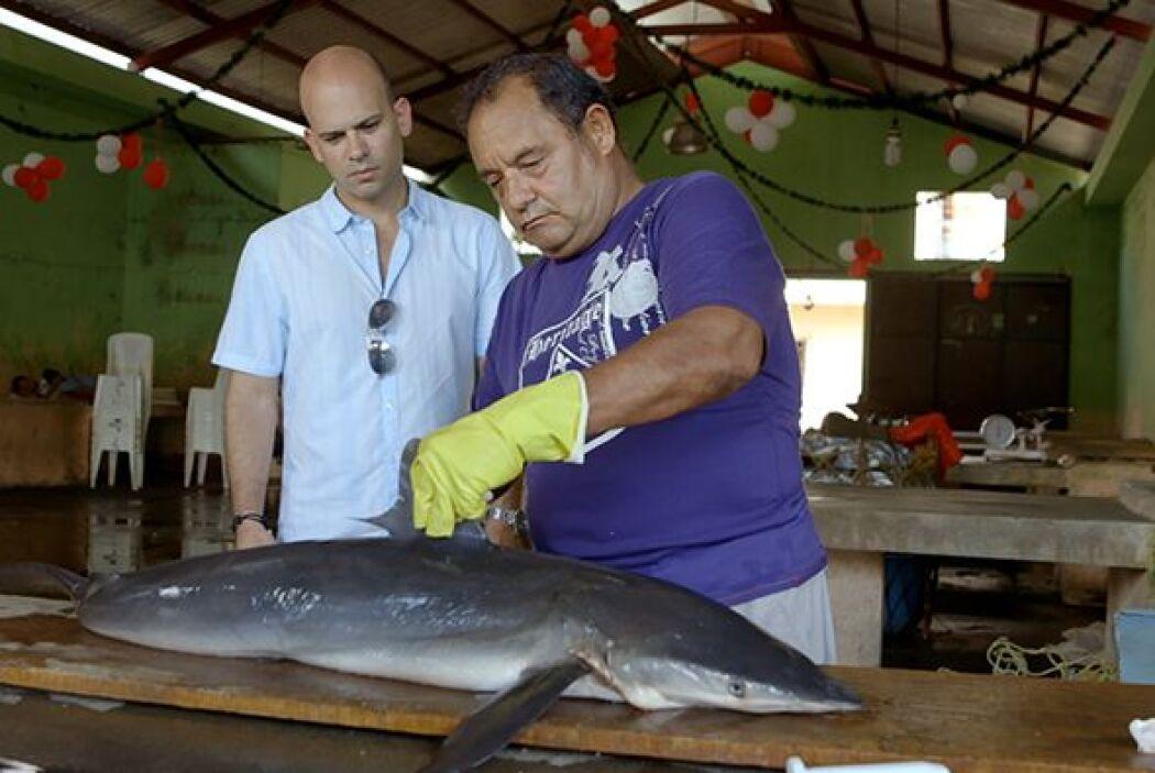 José Ángel le mostró al doctor Juan las partes más demandadas del tiburó...