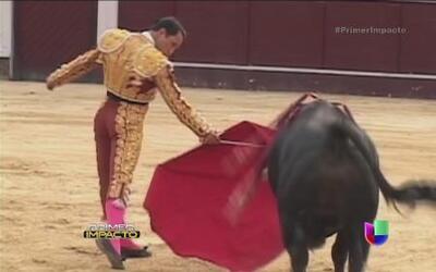 Fanáticos de las corridas de toros en Colombia realizan una huelga de ha...