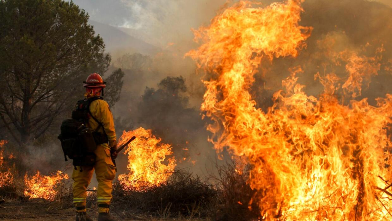 Bomberos luchan contra el incendio forestal 'Sand Fire' en Santa Clarita...