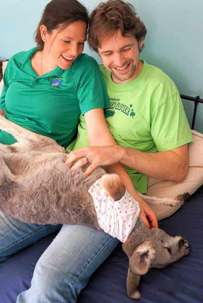 Próximamente Julia y su esposo tendrán un bebé y esperan que se adapte b...