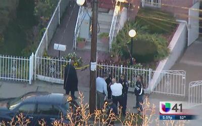 Mujer mata a embarazada a puñaladas en El Bronx