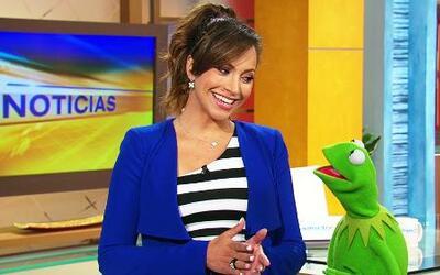 La Rana Kermit dio las noticias con Satcha Pretto