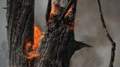 Incendios California (Imagen de archivo)