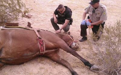 Depresión tropical Norman se debilita, pero sigue afectando México cabal...