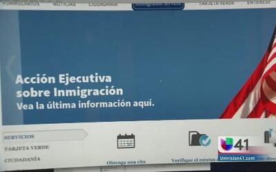 Brindan información en español sobre Acción Ejecutiva