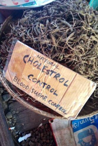 Según los tailandeses los 'chapulines' son maravillosos para combatir el...