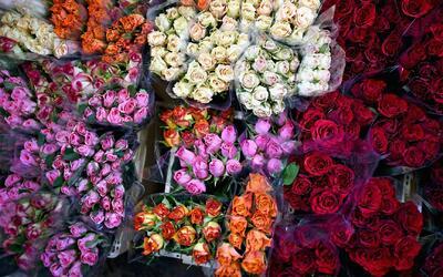 San Valentín, el día más esperado por las floristerías en Estados Unidos