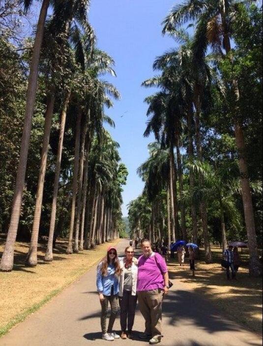 Los jardines botánicos de la ciudad tenían una gran avenida llenas de pa...