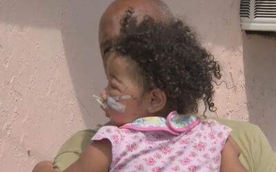 Una menor resultó con graves heridas en el rostro tras ser mordida por u...