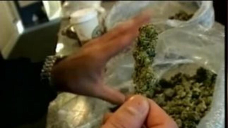 Marihuana ¿legalizarla o no?