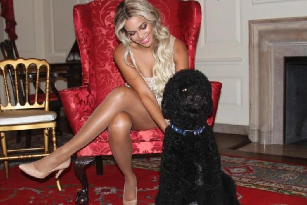 Beyonce se retrató con Sunny Obama, el perro de la familia presidencial...