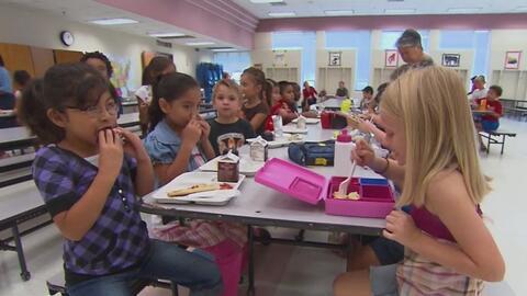 Recomendaciones para que sus hijos tengan una alimentación saludable