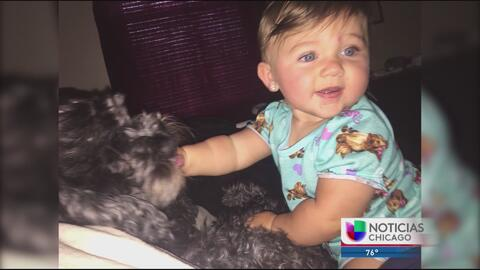 Un perro se sacrifica para salvar a un bebé de un voraz incendio