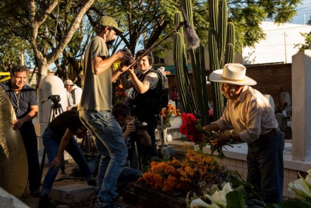 En su lugar, utilizan las flores, la caña de azúcar, el maíz y frutas co...