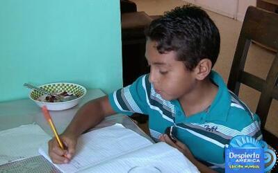 ¿Qué hacer para que los hijos sigan estudiando en vacaciones?
