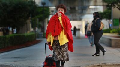 Frío en Miami - Sur de Florida