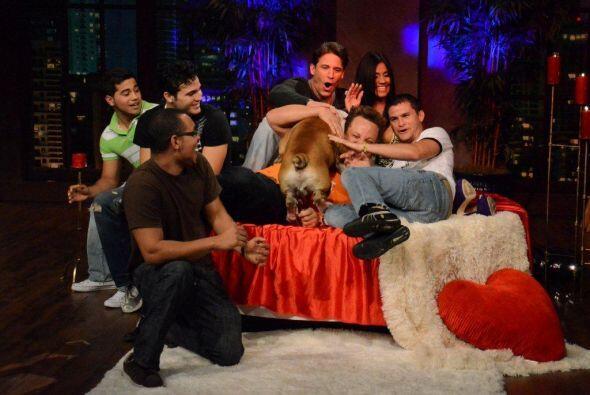Los perros del público se lanzaron sobre Maripily para mostrarle...