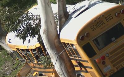 Estudiantes afectados por accidente de tránsito en 2014 recibirán indemn...