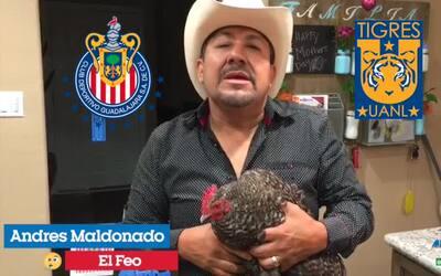 'La Gallina Vidente' ya tiene su favorito para la final entre Chivas y T...