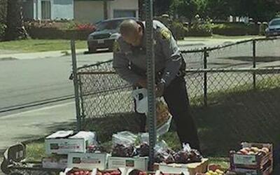 Vendedor de frutas indocumentado que fue arrestado podría ser víctima de...