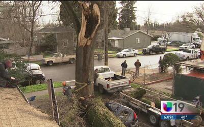 Residencia en Woodland sufre afectaciones por los fuertes vientos