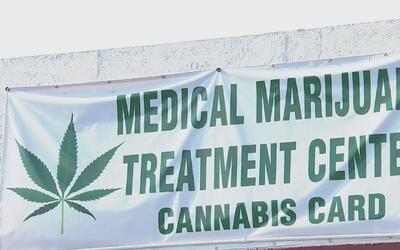 Clínica con facultad de recetar marihuana medicinal denuncia que algunas...
