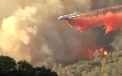 Controlan voraz incendio en el Parque Nacional Yosemite