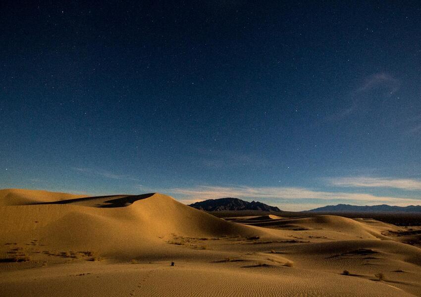 El desierto tiene una extensión de 1.6 millones de hectáreas.
