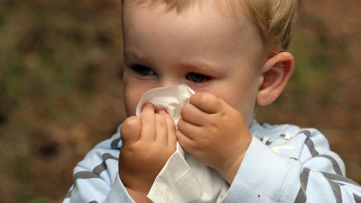 Little kid blowing their nose.