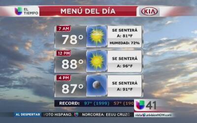 NY disfrutará de un jueves con temperaturas agradables
