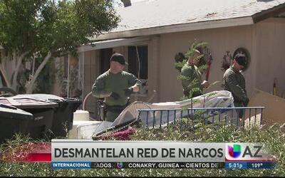 Desmantelan red criminal