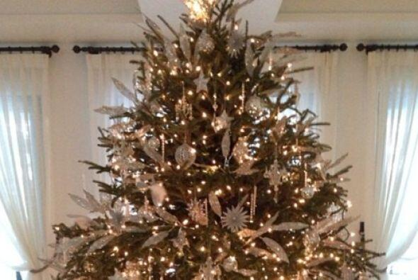 Y la magia de la navidad hizo realidad su deseo al dejar bajo su enorme...