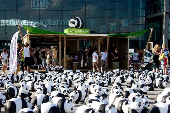 Además de los pandas, WWF despliega puestos de información...
