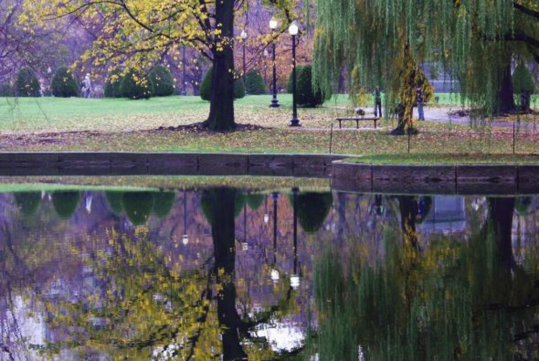 7. Boston: El Boston Common es el parque más antiguo del país y cuenta c...