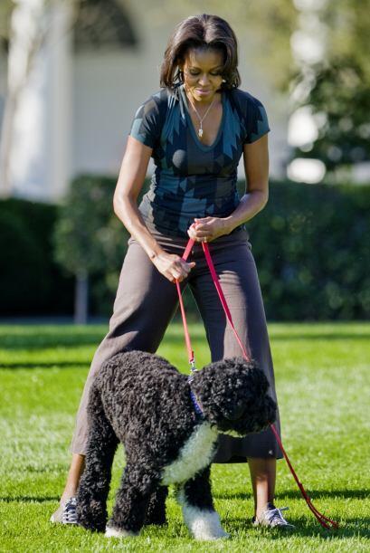 La primera dama, Michelle Obama, meses antes había reconocido que a Bo l...