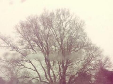 Así luce el noreste del país por las fuertes nevadas que s...