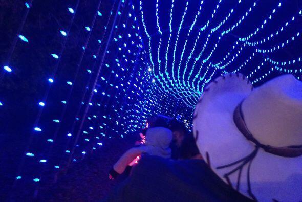 Es increíble pasar por los túneles de luces.