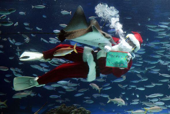 Las apariciones de Santa Claus son tres veces al día.