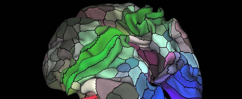 El mapa es un avance sin precedentes que tendría diversas utilidades en...